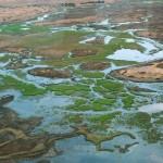 Botswana: Rere les petjades de Livingstone