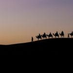 Australphoto ens presenta el seu nou web i els viatges a: Índia del Nord i el Marroc