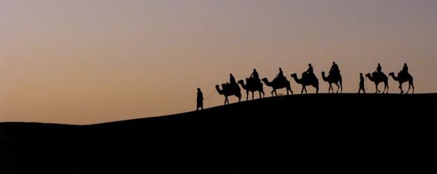 AustralPhoto nos presenta su nueva web y los viajes a: India del norte y Marruecos